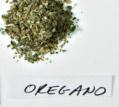 Oregano: healing herb